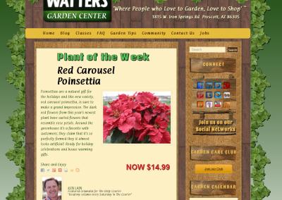Watters-Garden-Center